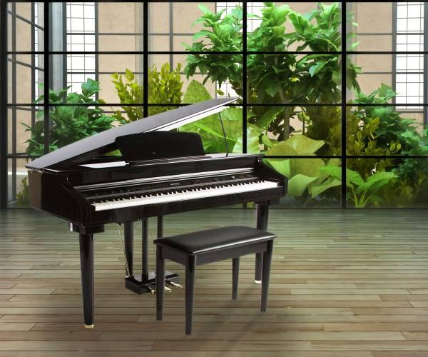 Piano Artesia AG28
