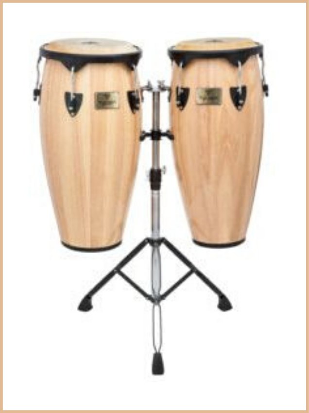 congas tycoon supremo series natural